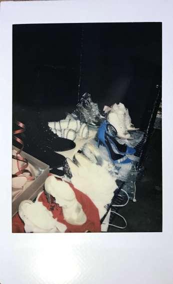 Edel Singh Polaroid 6